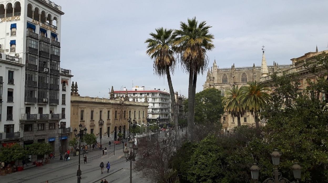 Hotel céntrico Sevilla